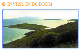 Bodrum Property Offers